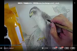 郑路迅工笔画鹰的画法教学视频4集百度云网盘下载学习美术视频教程
