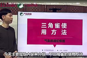 2019年李正坤气血疏通初级班视频课程百度云网盘下载学习中医教程