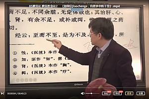 贾海忠脾胃论临床应用心得视频课程39集百度云网盘下载学习中医教程